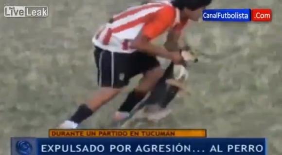 Calciatore argentino lancia un cane fuori dal campo e viene espulso