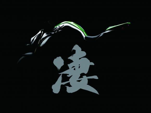 Kawasaki è pronta per svelare, all'EICMA 2013, la prossima generazione della Z1000