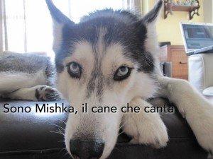 Mishka, il cane che parla e canta (video)