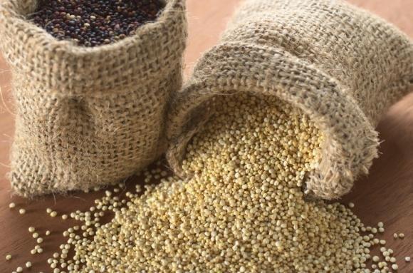 Quinoa: alimento dallo straordinario valore nutritivo ricco di proteine