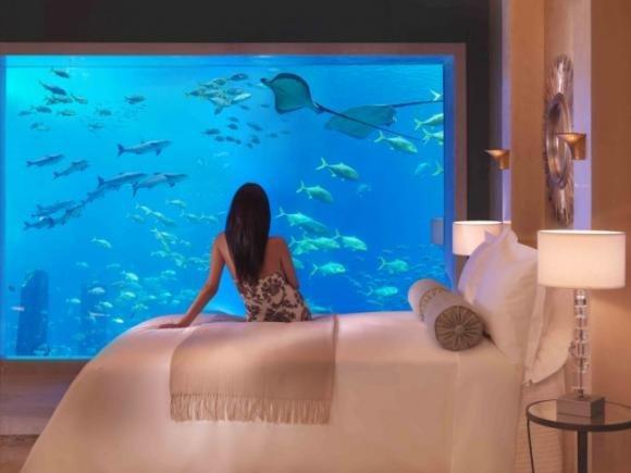 Dubai, suites di lusso sotto il mare, per un soggiorno da favola