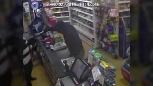 Ecco il VIDEO del genio che rapina il negozio della suocera, che lo riconosce immediatamente