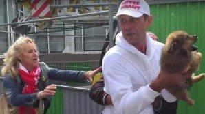 Attivisti sottraggono con la forza una cagnetta ad un senzatetto. Ecco il video straziante