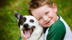 Un bambino non abbandonerebbe mai il suo animale: un video lo dimostra