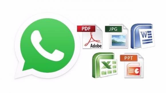 Whatsapp. L'invio di documenti Office avverrà nei formati nativi