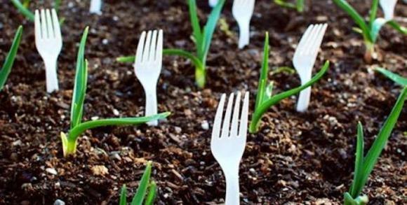 Amate il giardinaggio? Ecco alcuni trucchi davvero molto utili
