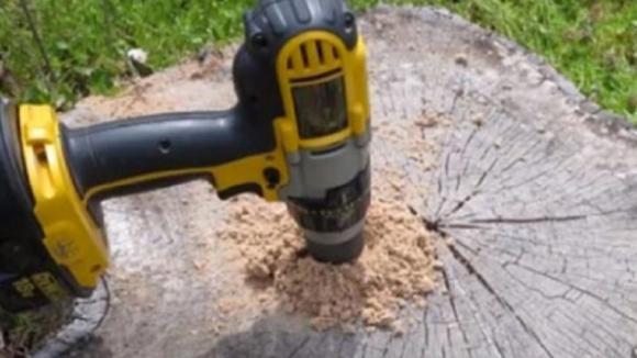 Doveva rimuovere un tronco d'albero. Il modo in cui lo fa è geniale!