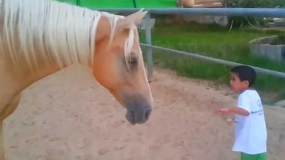 Bimbo di 4 anni con la sindrome di Williams si avvicina ad un cavallo. Ecco cosa succede