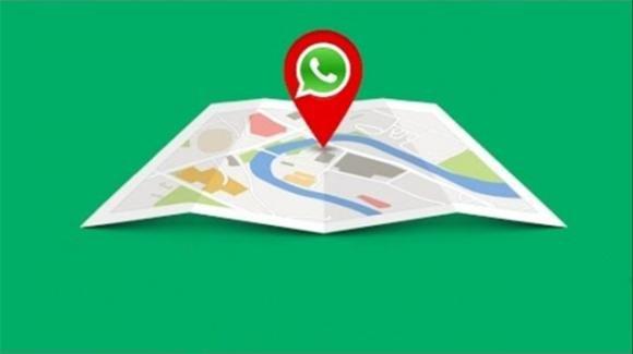 WhatsApp: in arrivo la condivisione della posizione con i gruppi