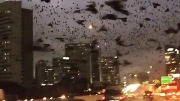 Stavano guidando per le strade di Houston quando hanno visto nel cielo qualcosa di terrificante!