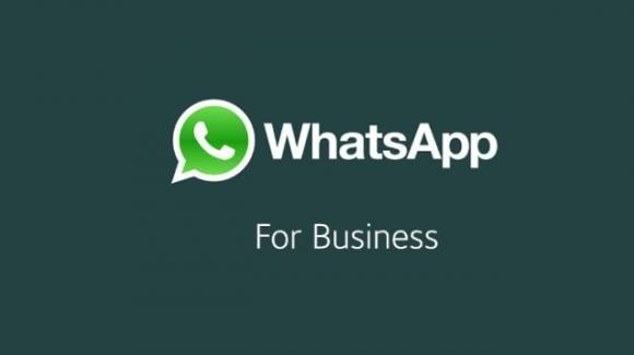 """WhatsApp: in arrivo l'app """"business"""". Eccone il funzionamento"""