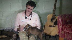 Questo ragazzo ama gli animali e la musica: è un veterinario unico nel suo genere!