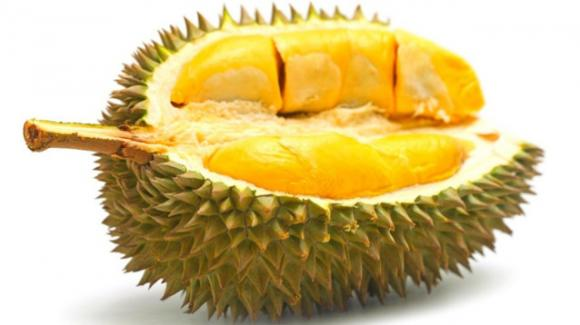 """Ecco qual è il segreto del """"Durian"""", il frutto più puzzolente del mondo"""