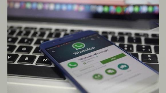 WhatsApp: arriva il supporto diretto ai video YouTube (iOS) e WhatsApp Business (Android)