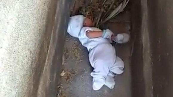Bimbo di 2 mesi abbandonato dalla madre: i vicini lo trovano in un cimitero e lo salvano