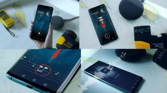 Il canto delle balene si trasforma in musica grazie ad una app