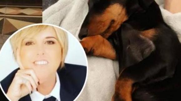 Nadia Toffa, chiude la cagnolina in bagno quando è fuori: è polemica sui social