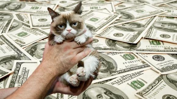 Grumpy Cat è il gatto più ricco del mondo