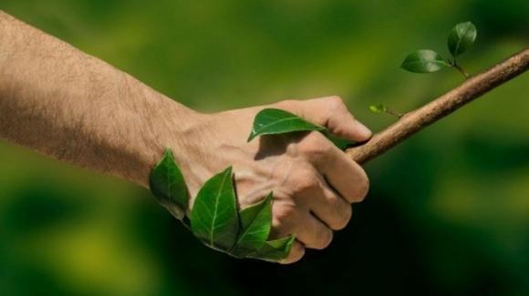 Milano, prima edizione del Festival dell'Ambiente e della sostenibilità