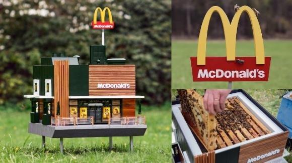 McDonald's lancia il più piccolo ristorante del mondo: i suoi clienti saranno le api