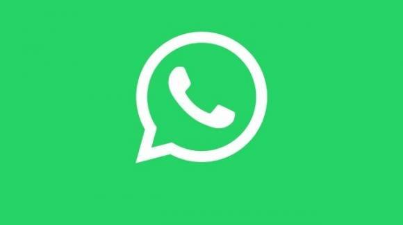 WhatsApp: pulsanti interattivi, condivisione messaggi su Facebook, privacy e molto altro