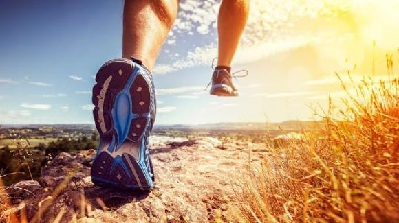 Pigri o sportivi? Dipende dal microbiota intestinale: ecco i risultati di uno studio americano