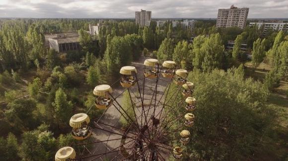 Il disastro di Chernobyl ha permesso di scoprire la capacità di adattamento delle piante