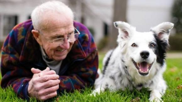 """Il cane """"intelligente"""" Chaser ci ha lasciato: era l'unico a comprendere più di mille parole"""