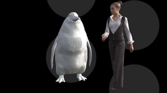 Nuova Zelanda: scoperto fossile di un pinguino gigante di dimensioni umane