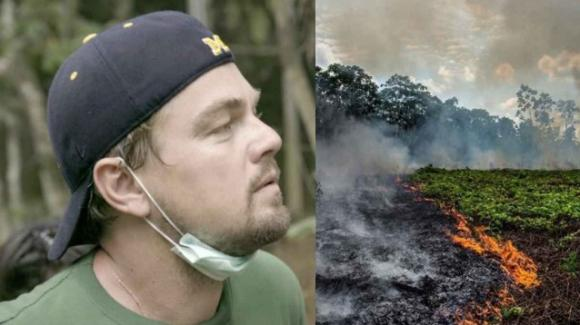 Il sensazionale gesto di Leonardo DiCaprio: dona 5 milioni di dollari per salvare la foresta amazzonica