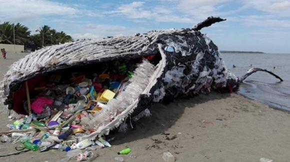 L'inquinamento modifica l'ambiente e gli animali cercano riparo altrove con conseguenze disastrose