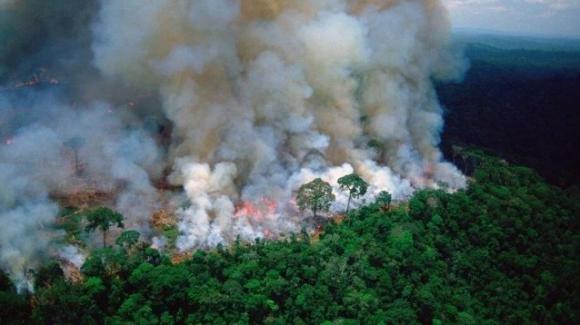 Amazzonia: Apple ha annunciato una donazione per combattere gli estesi incendi di questi giorni