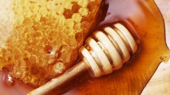 Calo produzione di miele, ne troveremo molto meno in vendita quest'anno