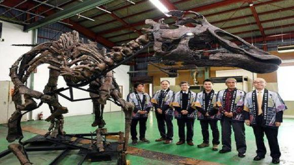 "Scoperta una nuova specie di dinosauro in Giappone: ""Kamuysaurus japonicus"" era alto 8 metri e pesava 4-5 tonnellate"