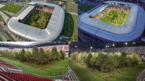 """Apre """"For Forest"""", lo stadio che respira"""