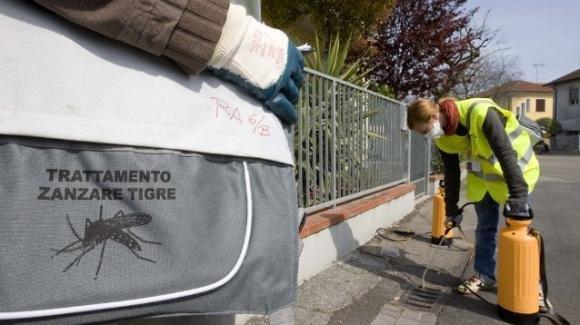Firenze, due casi accertati di Dengue. Partita la disinfestazione