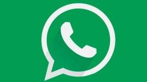 WhatsApp beta per iOS: novità per l'app standard e lo spin-off Business
