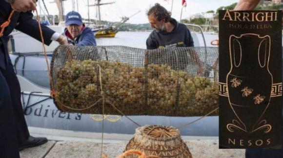 Nesos, il vino ottenuto con uva che riposa in mare