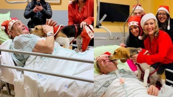 Imola, cane in ospedale saluta l'amico ricoverato: il paziente migliora dopo la visita ricevuta