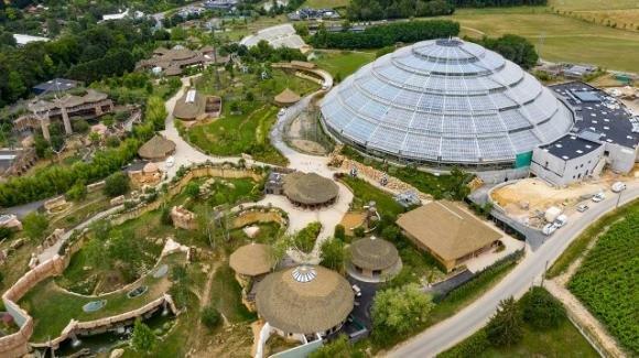 Inaugurata la cupola avveniristica dello zoo di Beauval