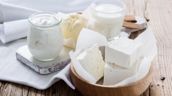 Il latte ed i latticini sono amici o nemici della salute? La parola agli esperti