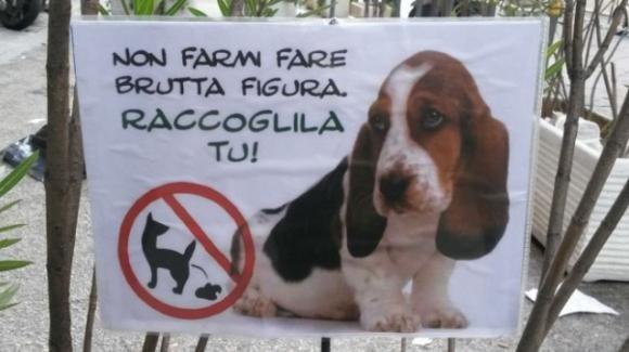 Ragazzino non raccoglie le feci del cane, 70enne lo punisce spalmandogliele in faccia