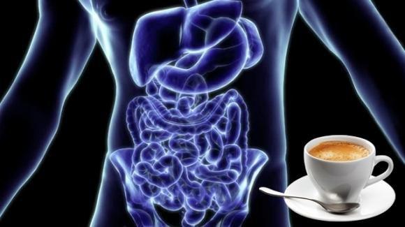 Il caffè può ridurre l'insorgenza di tumori all'apparato digerente e al fegato