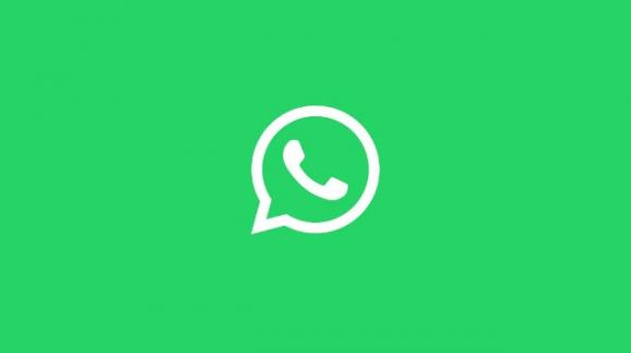 WhatsApp: seconda a Febbraio, dark mode for Business, stickers colorati Holi