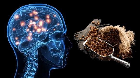 Scoperti gli effetti della caffeina sulle funzioni cognitive