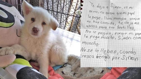 Messico: bambino abbandona un cane con un messaggio straziante