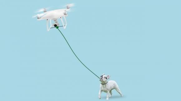In tempi di coronavirus, un drone farà passeggiare il vostro cane