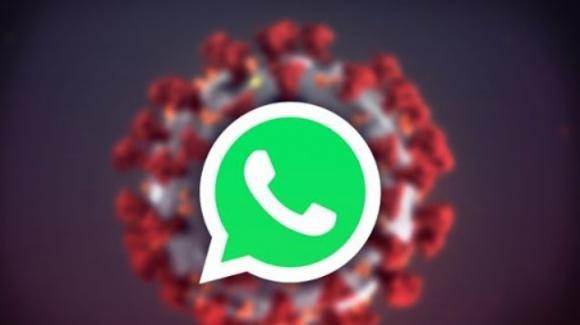 Coronavirus, anche per WhatsApp è un campo di battaglia: video ridotti, ecco quali