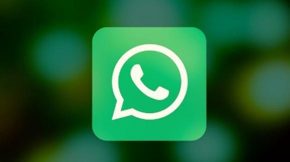 WhatsApp: in beta ricerca avanzata, crittografia backup, stop download automatici