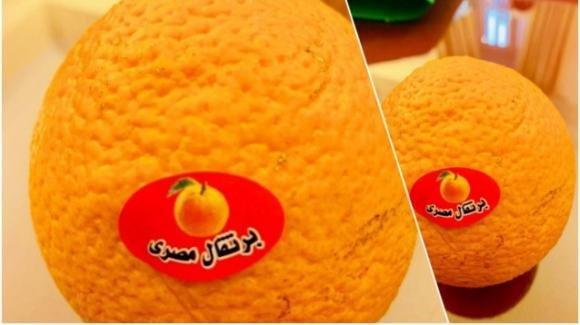Matteo Salvini contro le arance africane in Parlamento. Ma in molti l'accusano di aver ritoccato la foto con Photoshop